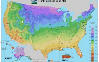 Hardiness Zones & Frost Dates
